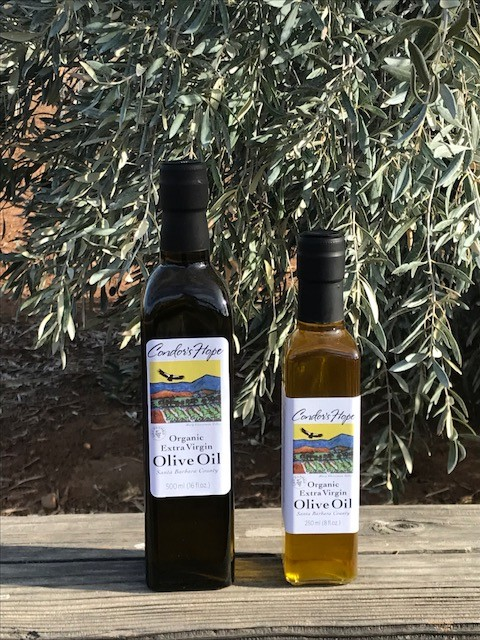 Olive Oil - Condor's Hope