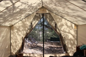 view from the tent cabin