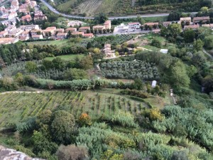 The landscape of the Umbria region of Italy has been farmed for 1000s of years.